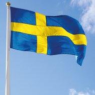 Can you speak swedish?