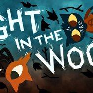 Night in the woods quiz