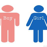 This quiz will guess your gender!