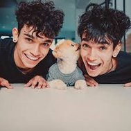which dobre twin are you?