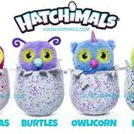 What kind of hatchimals are you?